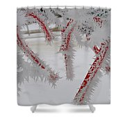Don't Break My Heart-unique And Rare Formation Of Spiked Snow Icicles  Shower Curtain