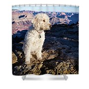 Doodle On Grand Canyon Rim Shower Curtain