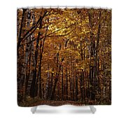 Door County No. 1 Shower Curtain