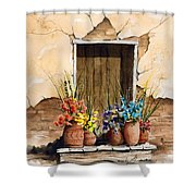 Door With Flower Pots Shower Curtain