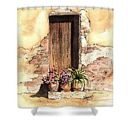 Door With Flowers Shower Curtain