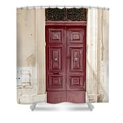 Doors Of The World 73 Shower Curtain