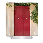 Doors Of The World 79 Shower Curtain