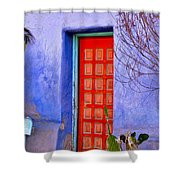 Doorway 6 Shower Curtain