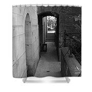 Doorway One Shower Curtain