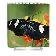 Doris Butterfly Shower Curtain