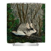 Dormouse In Ivy Shower Curtain