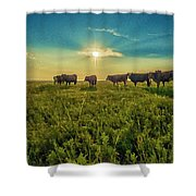 Dornodo Steppe Mongolia Shower Curtain
