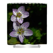 Dots Of Beauty Shower Curtain