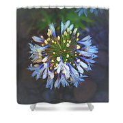 Dotted Light Shower Curtain