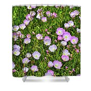 Dotted Meadow Shower Curtain