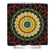 Dotted Wishes No. 6 Mandala Shower Curtain