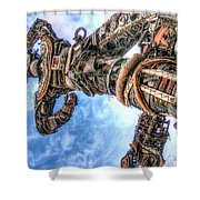 Douala New Freedom Monument Shower Curtain