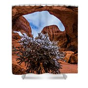 Double Arch Winter Shower Curtain