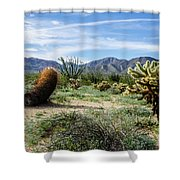 Double Barrel Cactus Shower Curtain