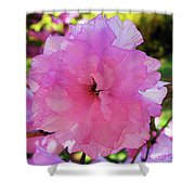 Double Bloom Shower Curtain