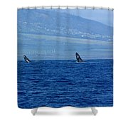 Double Breach Shower Curtain
