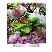 Double Cherry Blossoms Shower Curtain