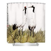 Double Crane Shower Curtain