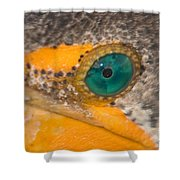 Double-crested Cormorant's Emerald Eye Shower Curtain