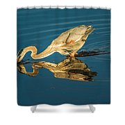 Double Dipper Shower Curtain