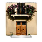 Double Doors And Balcony Shower Curtain