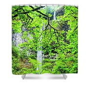 Double Falls 2 Shower Curtain