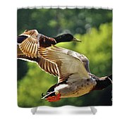 Double Green Heads In Flight Shower Curtain