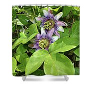 Double Passion Flowers Shower Curtain
