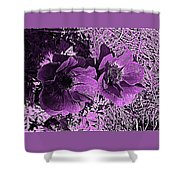 Double Poppies In Purple Shower Curtain