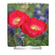 Double Take-two Red Poppies. Shower Curtain