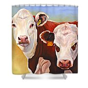 Double Trouble Hereford Cows Shower Curtain