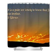 Doubt And Pain Shower Curtain
