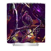 Dove Birds Animals Nature  Shower Curtain