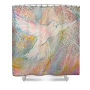 Dove Detail From Immaculate Conception Shower Curtain
