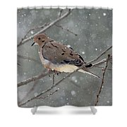 Dove In The Snow Shower Curtain