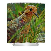 Dove Painterly Shower Curtain