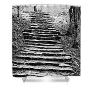 Dovedale Steps Shower Curtain