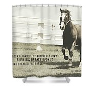 Down And Back Quote Shower Curtain