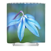 Down And Blue Shower Curtain