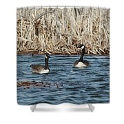 Down At The Bay Shower Curtain