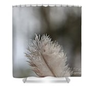 Down Feather Shower Curtain