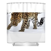 Down Low And Stealthy D4788 Shower Curtain