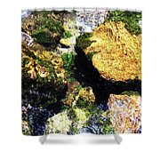 Down Stream Of Clearwater Falls Shower Curtain