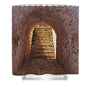 Down To The Cellar Shower Curtain