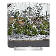 Down Trees Shower Curtain