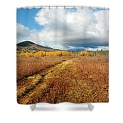 Downes - Oliverian Brook Ski Trail - Albany, New Hampshire Shower Curtain by Erin Paul Donovan