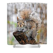 Downright Adorable Shower Curtain