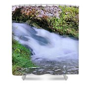 Downstream Shower Curtain