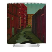 Downtown Alley-portland Maine Shower Curtain